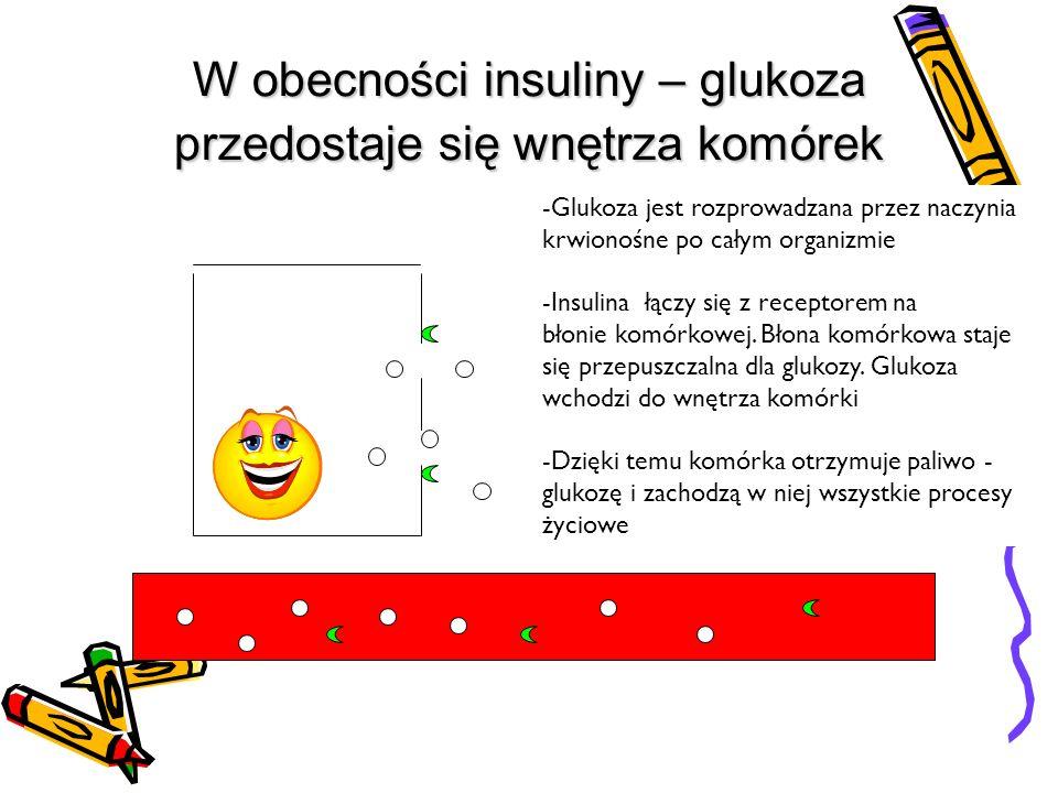 W obecności insuliny – glukoza przedostaje się wnętrza komórek