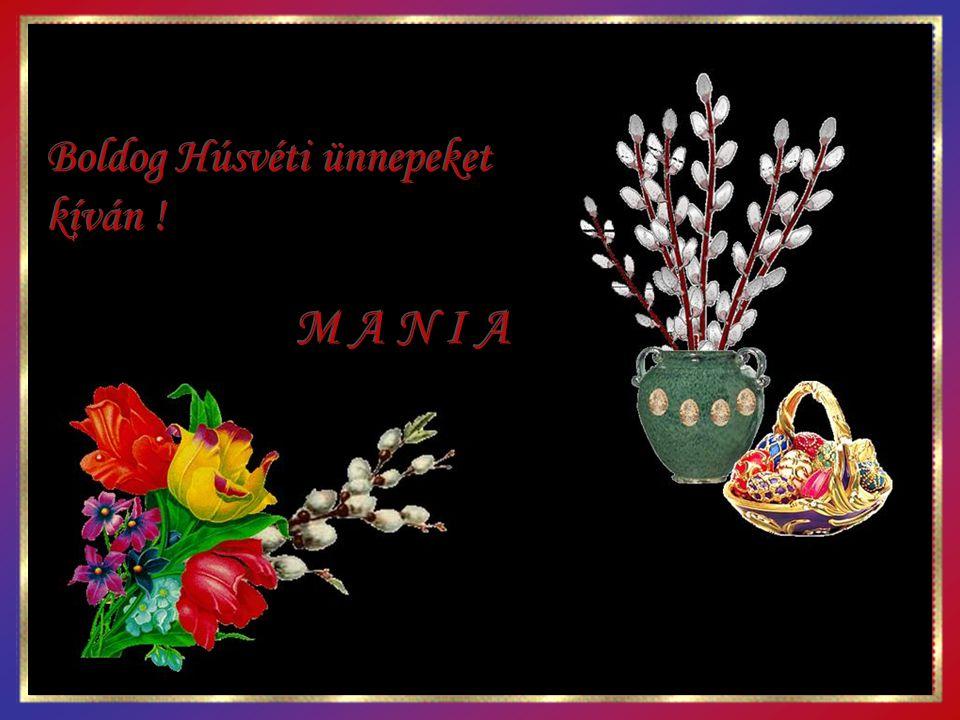Boldog Húsvéti ünnepeket kíván !