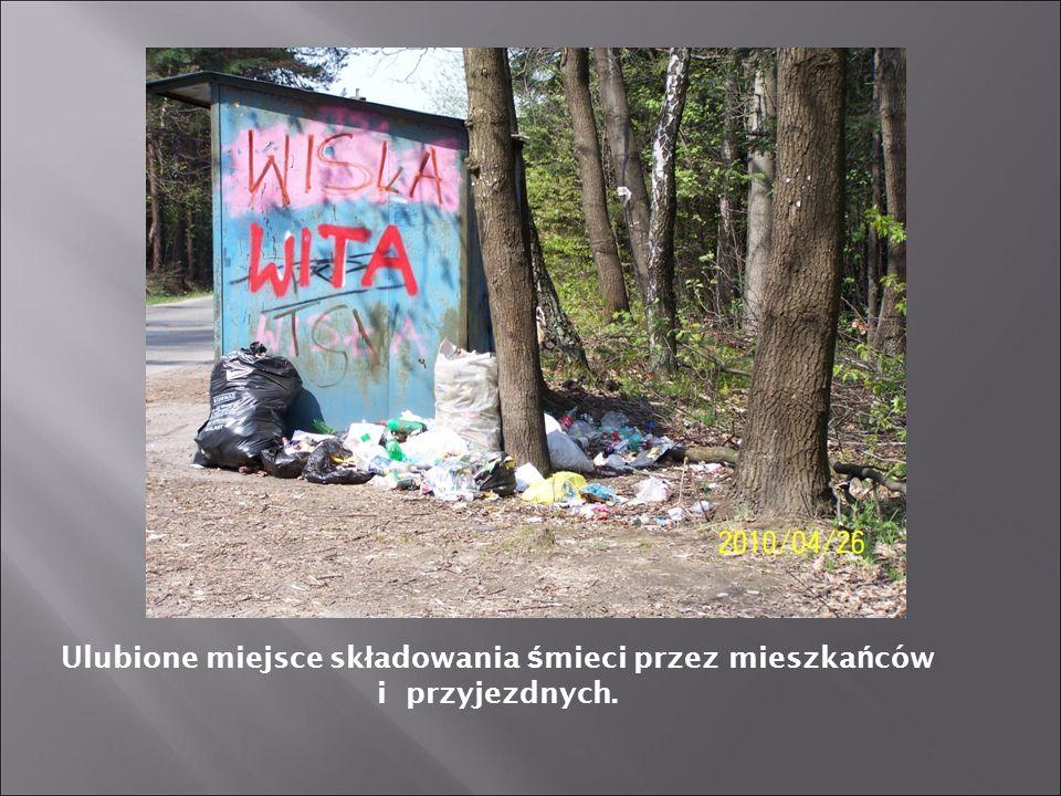 Ulubione miejsce składowania śmieci przez mieszkańców i przyjezdnych.