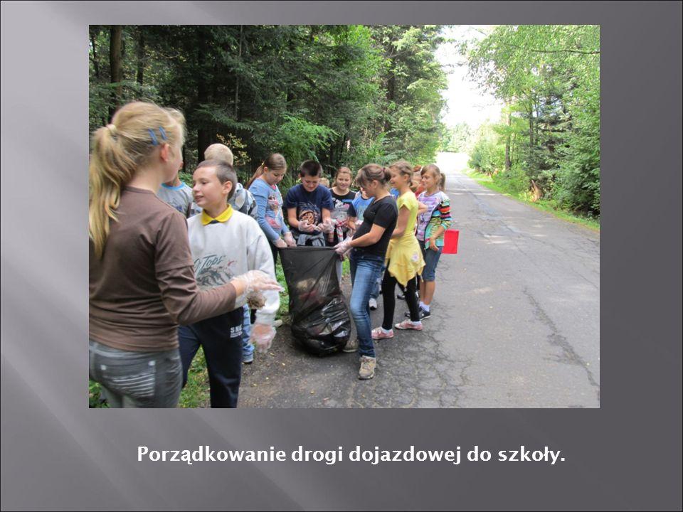 Porządkowanie drogi dojazdowej do szkoły.