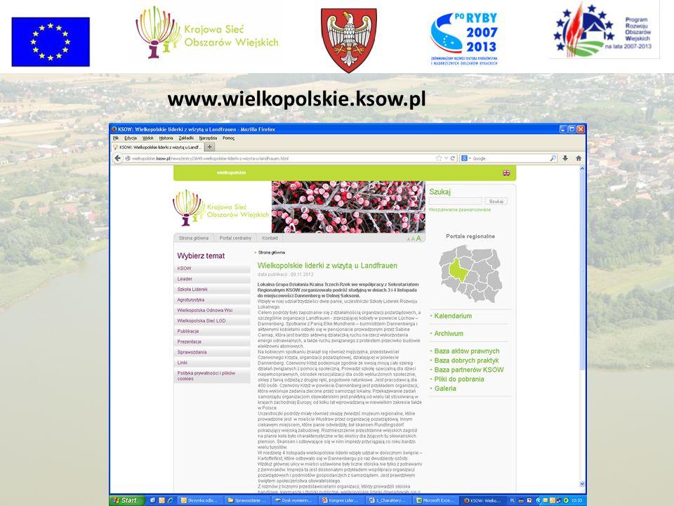 www.wielkopolskie.ksow.pl