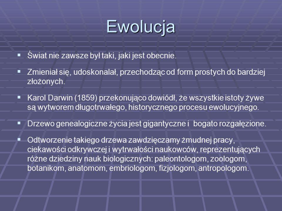 Ewolucja Świat nie zawsze był taki, jaki jest obecnie.