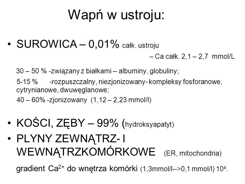 Wapń w ustroju: SUROWICA – 0,01% całk. ustroju