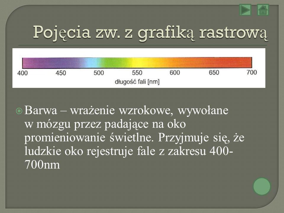 Pojęcia zw. z grafiką rastrową