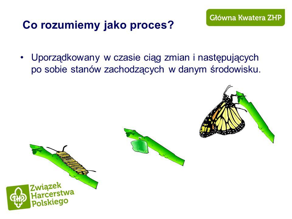 Co rozumiemy jako proces
