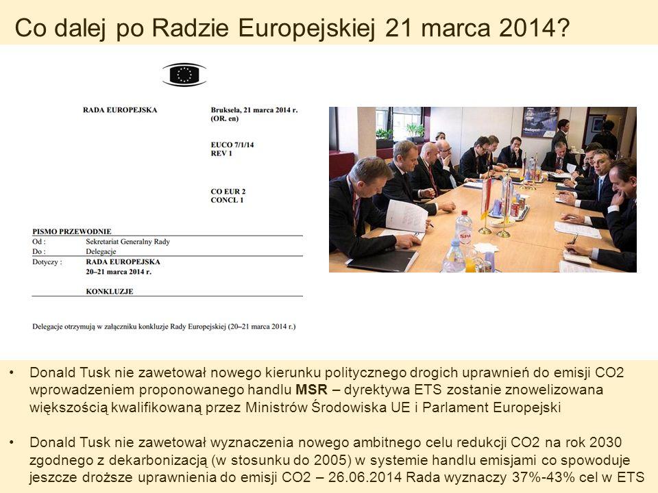 Co dalej po Radzie Europejskiej 21 marca 2014