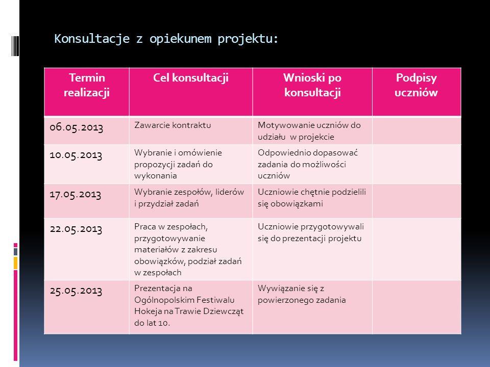 Konsultacje z opiekunem projektu: