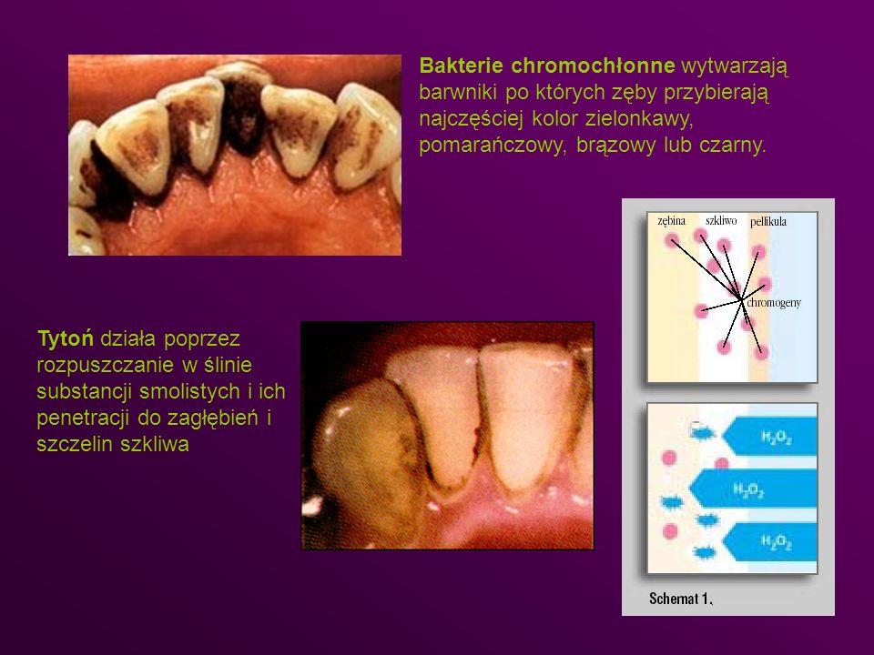 Bakterie chromochłonne wytwarzają barwniki po których zęby przybierają najczęściej kolor zielonkawy, pomarańczowy, brązowy lub czarny.