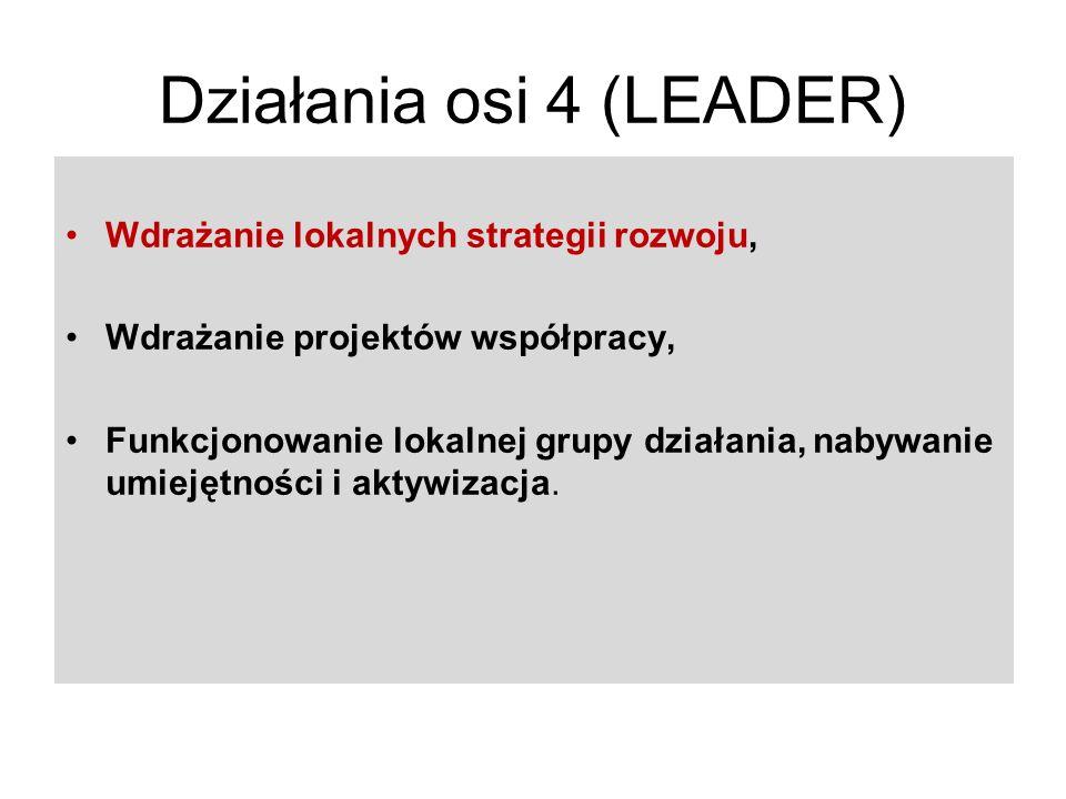 Działania osi 4 (LEADER)