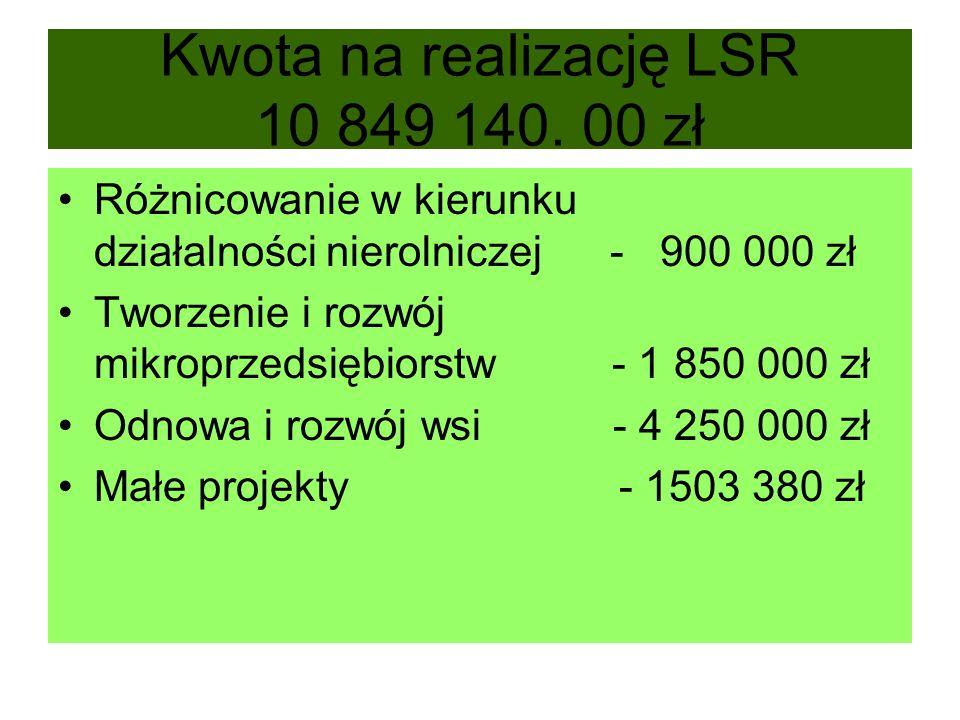 Kwota na realizację LSR 10 849 140. 00 zł