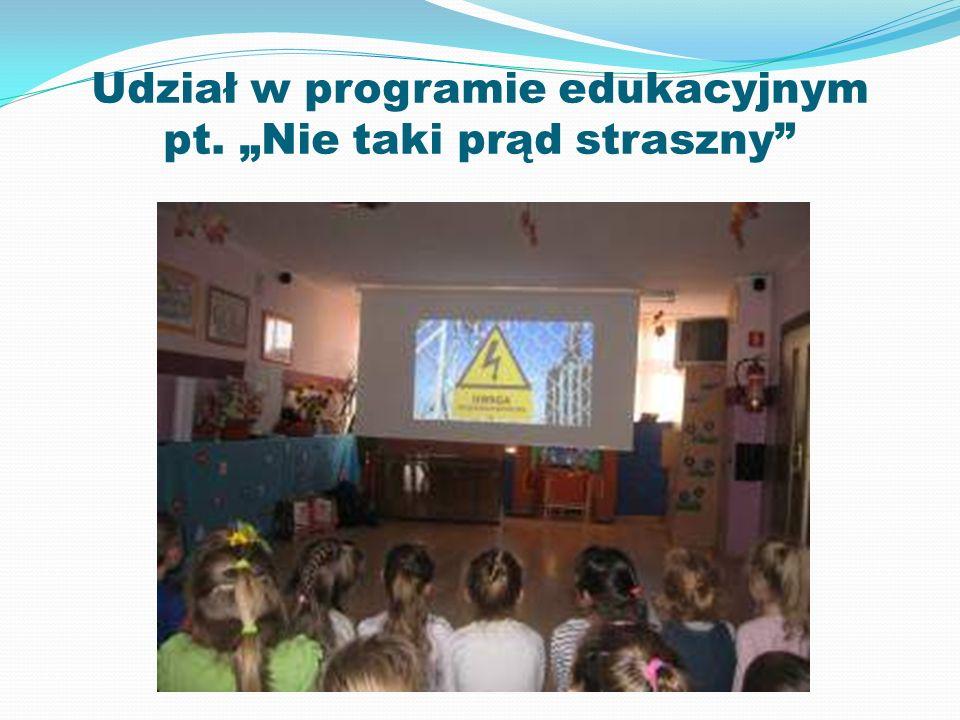 """Udział w programie edukacyjnym pt. """"Nie taki prąd straszny"""