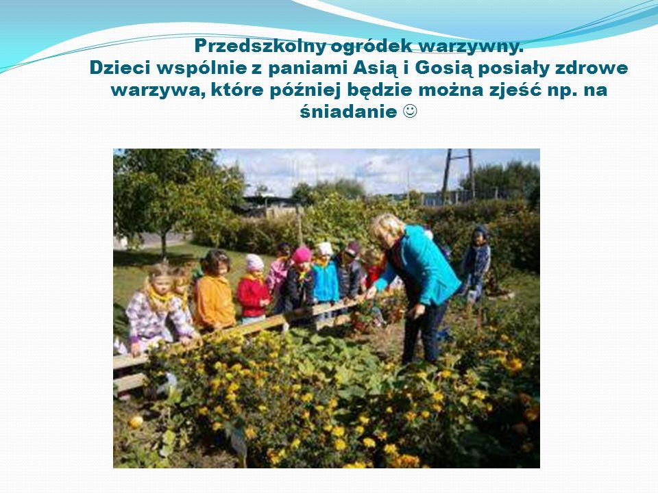 Przedszkolny ogródek warzywny