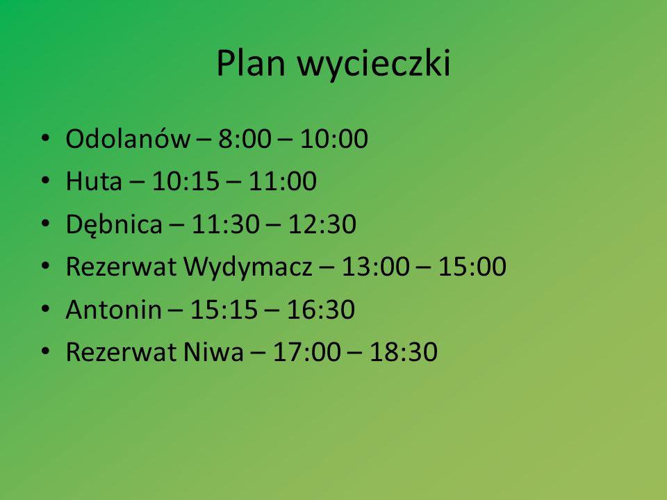Plan wycieczki Odolanów – 8:00 – 10:00 Huta – 10:15 – 11:00