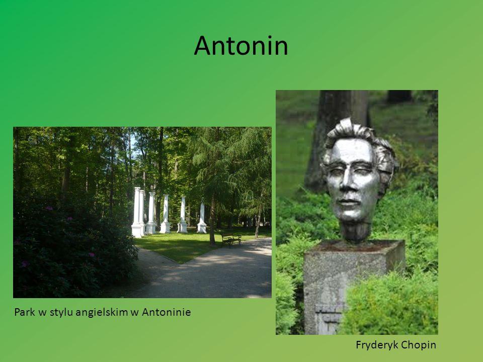 Antonin Park w stylu angielskim w Antoninie Fryderyk Chopin