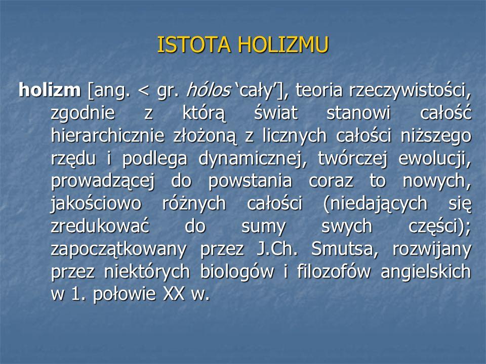 ISTOTA HOLIZMU