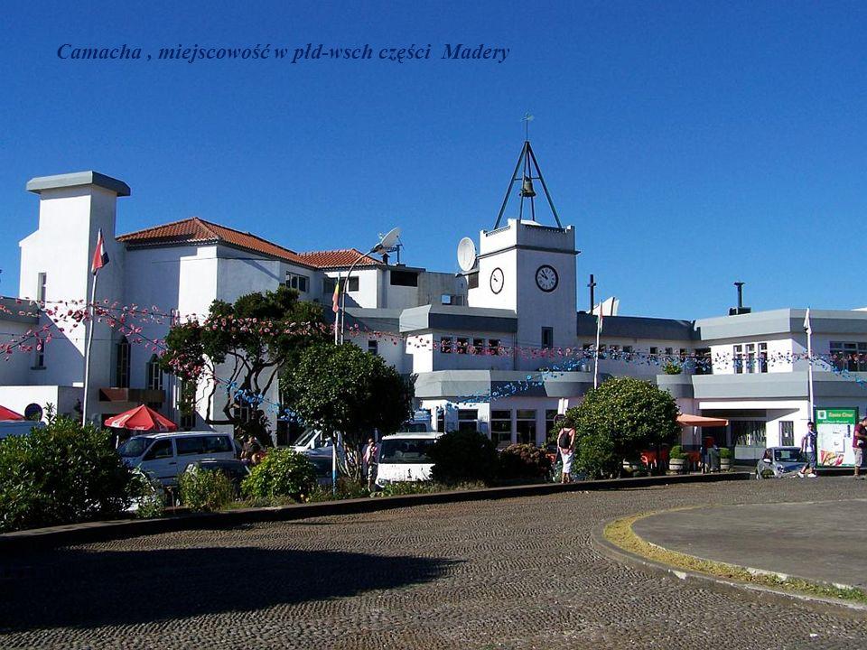 Camacha , miejscowość w płd-wsch części Madery
