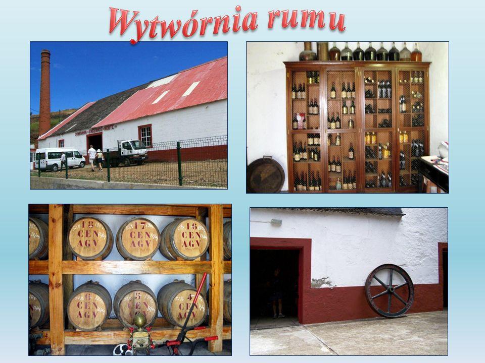 Wytwórnia rumu