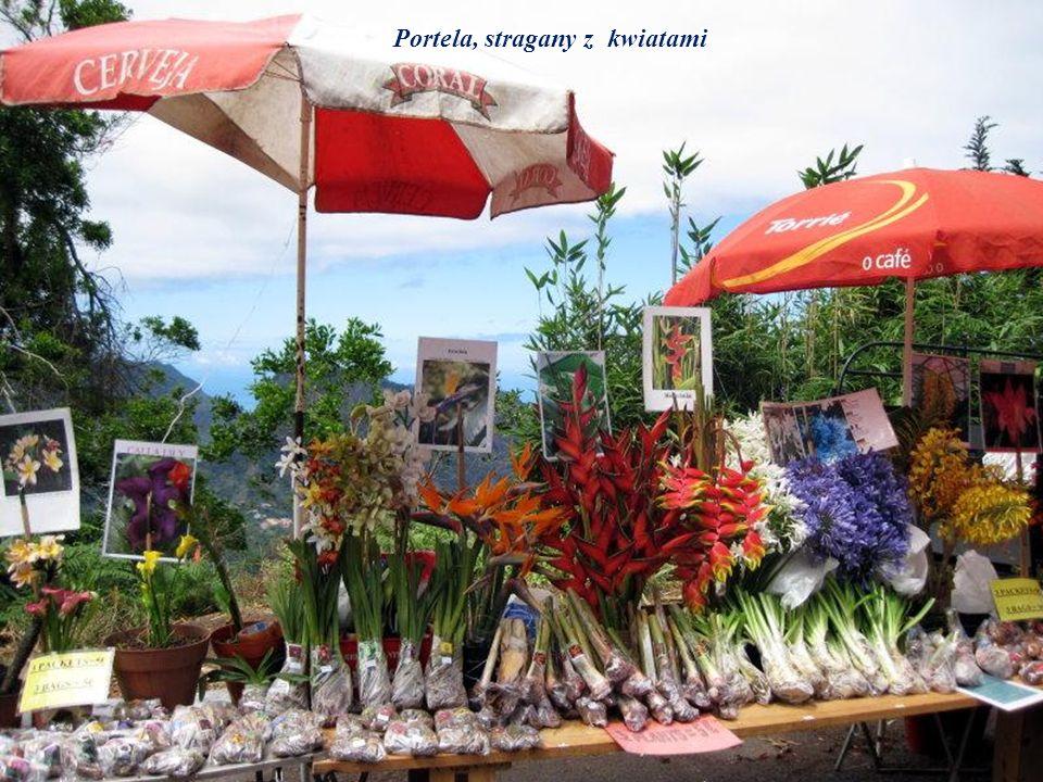 Portela, stragany z kwiatami