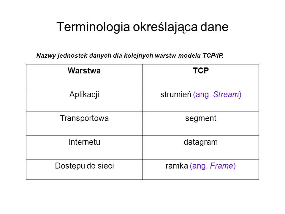 Terminologia określająca dane