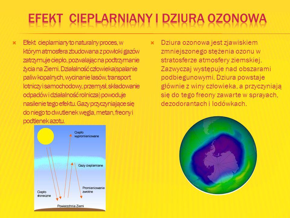 Efekt cieplarniany i dziura ozonowa