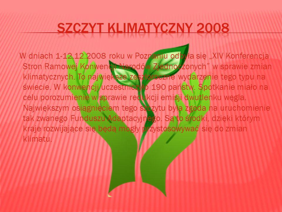 Szczyt klimatyczny 2008
