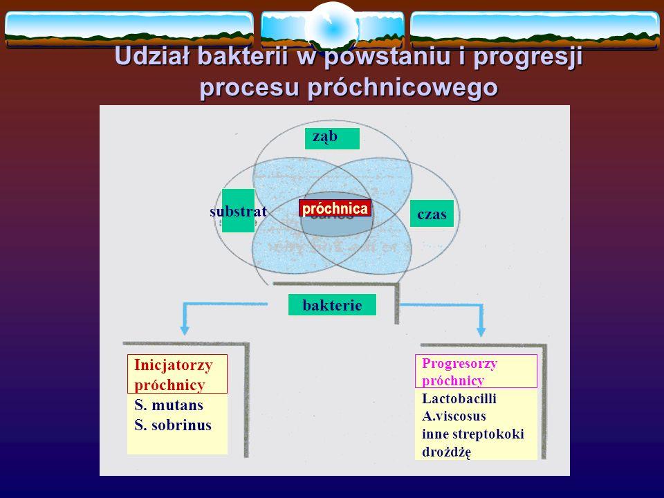 Udział bakterii w powstaniu i progresji procesu próchnicowego