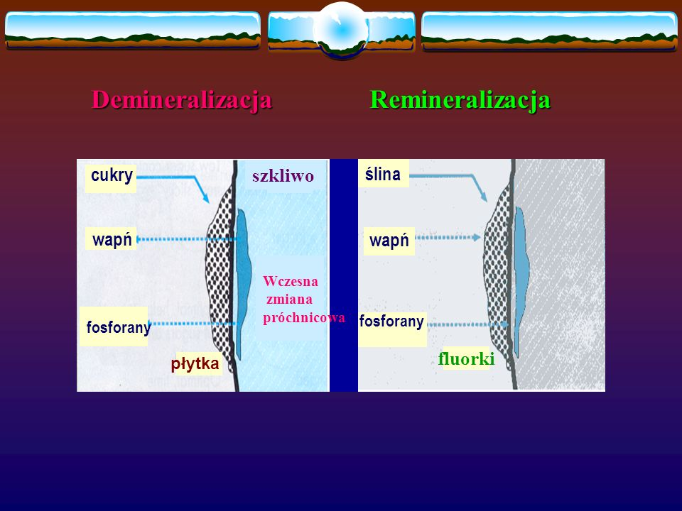Demineralizacja Remineralizacja