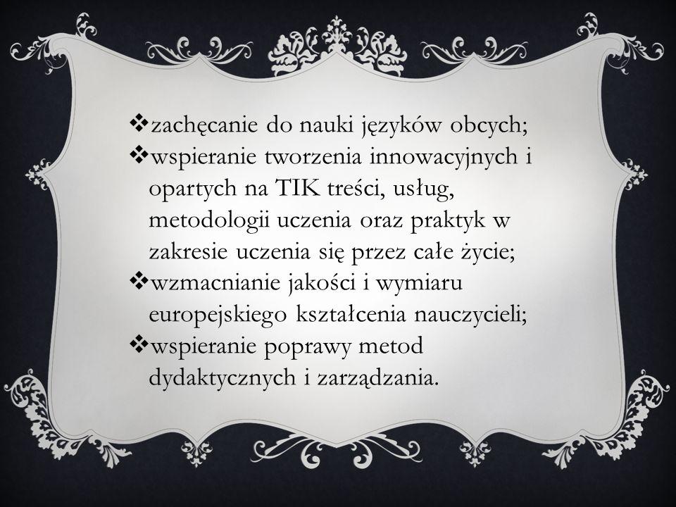 zachęcanie do nauki języków obcych;