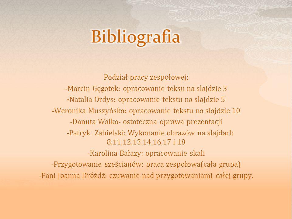 Bibliografia Podział pracy zespołowej: