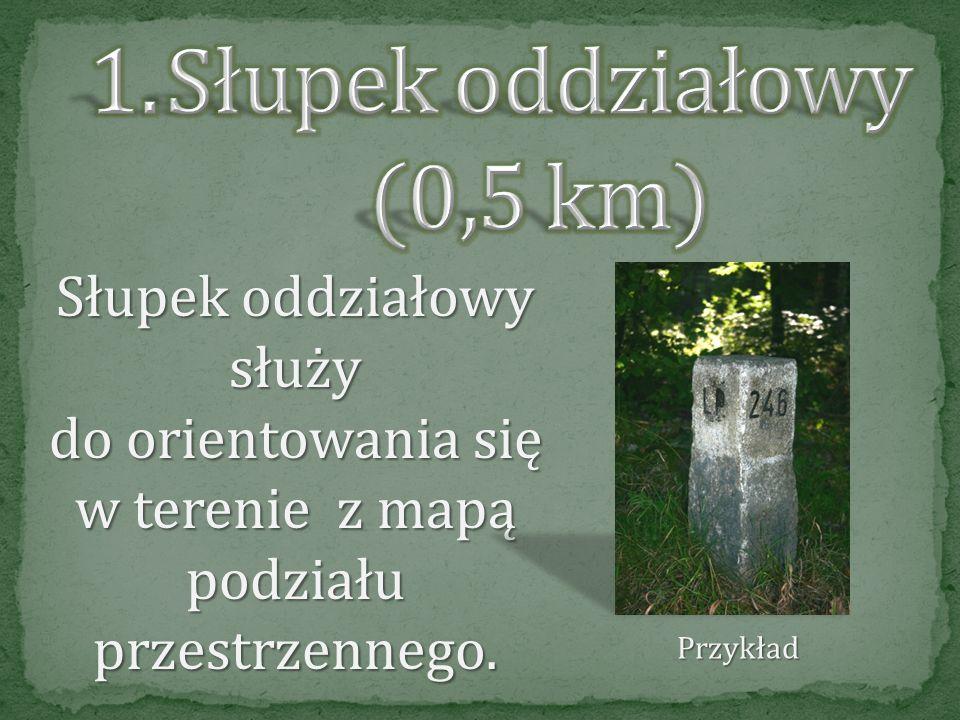 Słupek oddziałowy (0,5 km)