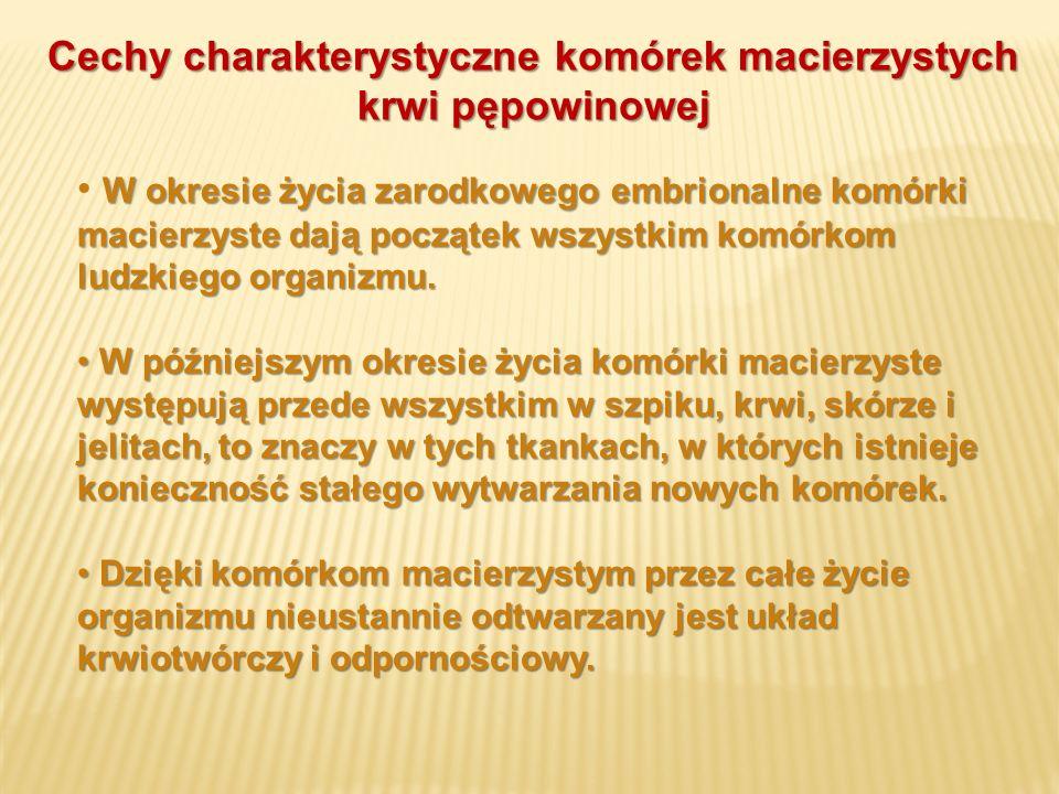 Cechy charakterystyczne komórek macierzystych