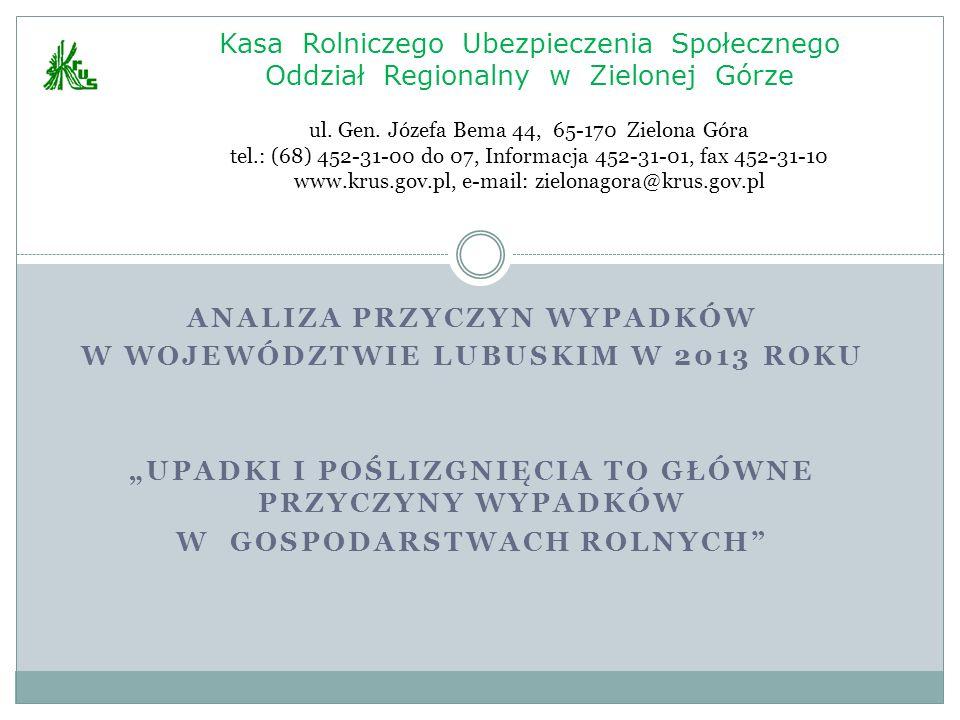 Analiza przyczyn wypadków W województwie lubuskim w 2013 roku