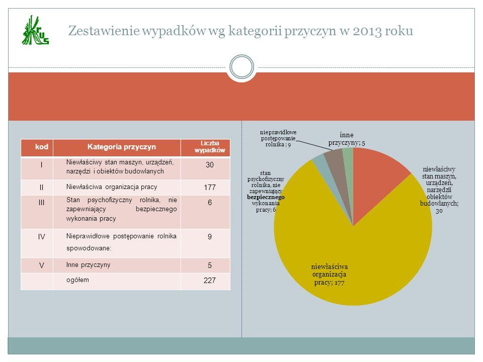 Zestawienie wypadków wg kategorii przyczyn w 2013 roku