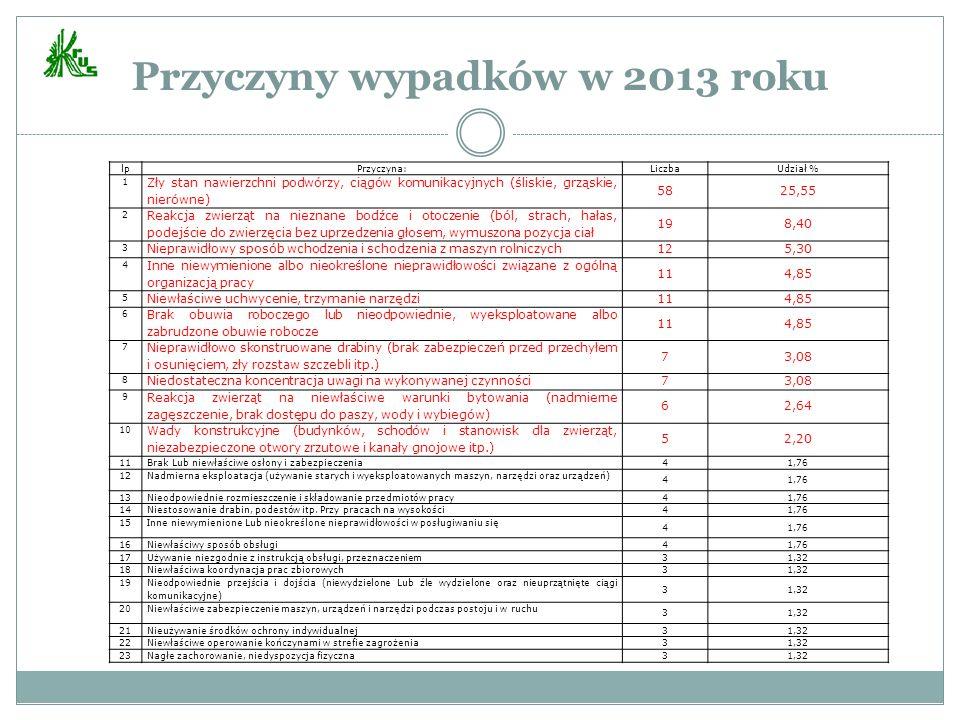 Przyczyny wypadków w 2013 roku
