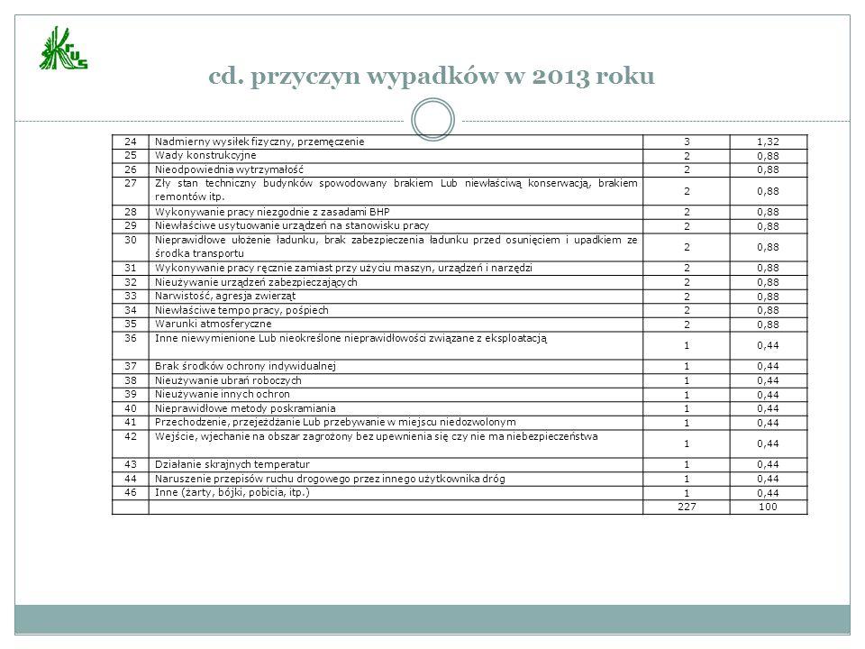 cd. przyczyn wypadków w 2013 roku