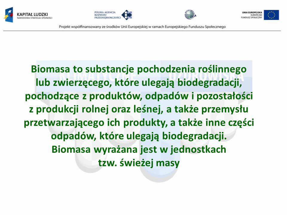 Biomasa to substancje pochodzenia roślinnego