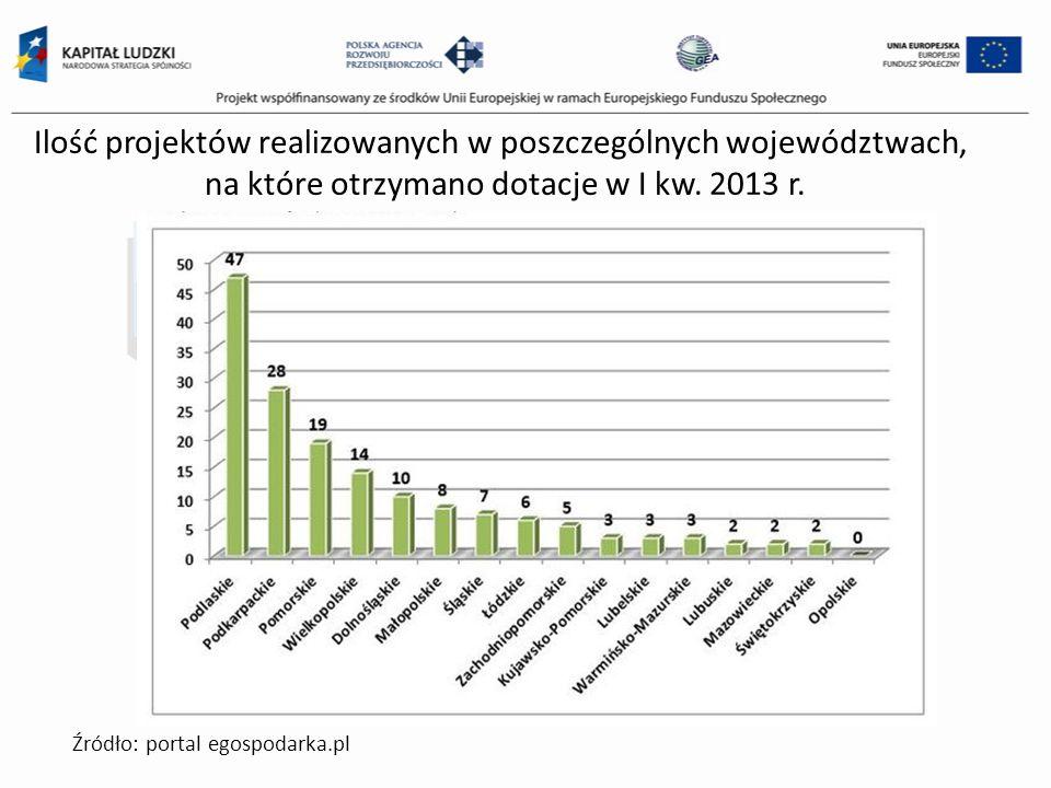 Ilość projektów realizowanych w poszczególnych województwach, na które otrzymano dotacje w I kw. 2013 r.