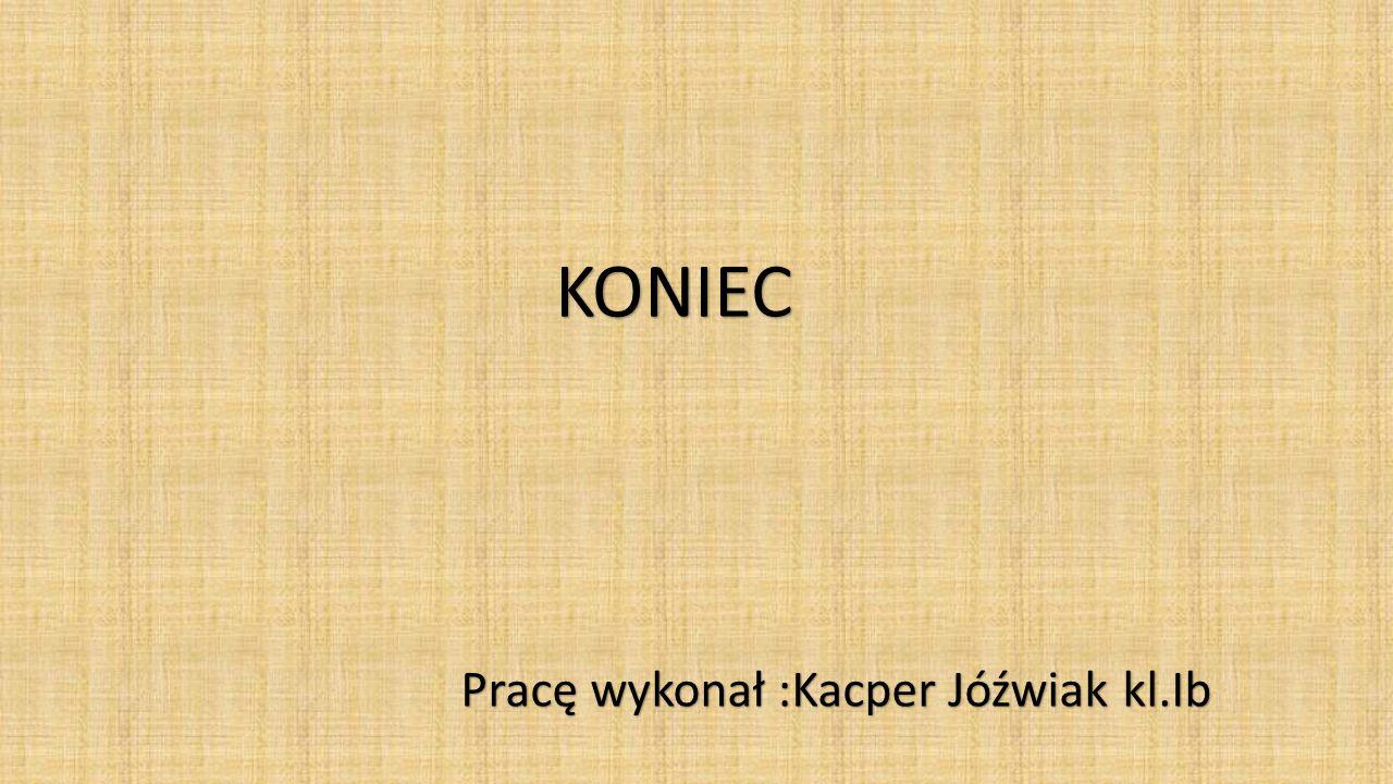 Pracę wykonał :Kacper Jóźwiak kl.Ib