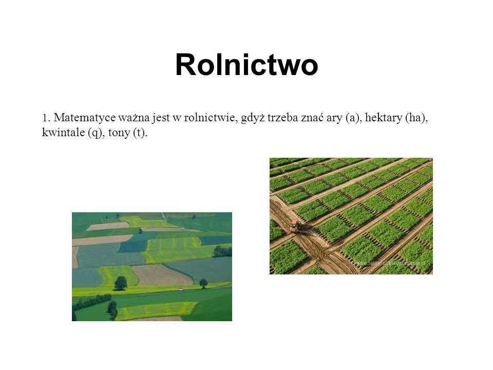 Rolnictwo 1.