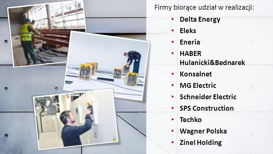 Delta Energy Eleks. Eneria. HABER Hulanicki&Bednarek. Konsalnet. MG Electric. Schneider Electric.