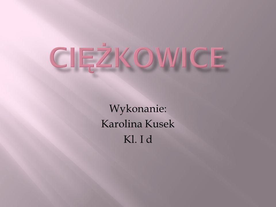Wykonanie: Karolina Kusek Kl. I d