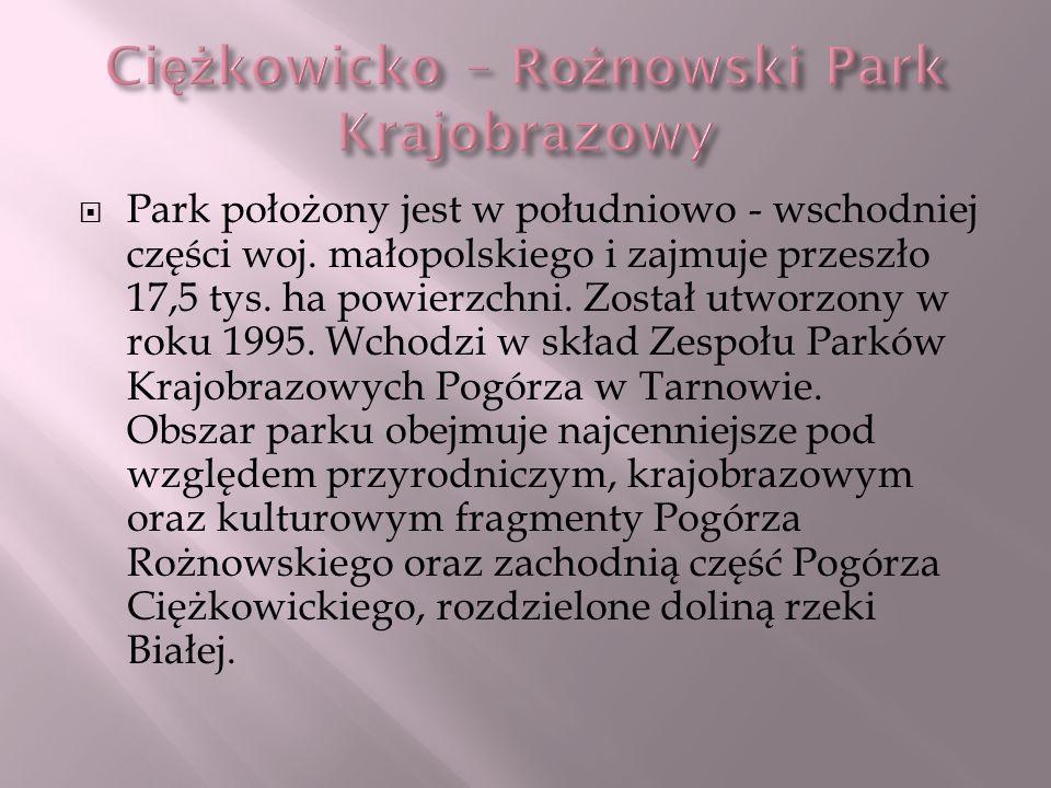 Ciężkowicko – Rożnowski Park Krajobrazowy