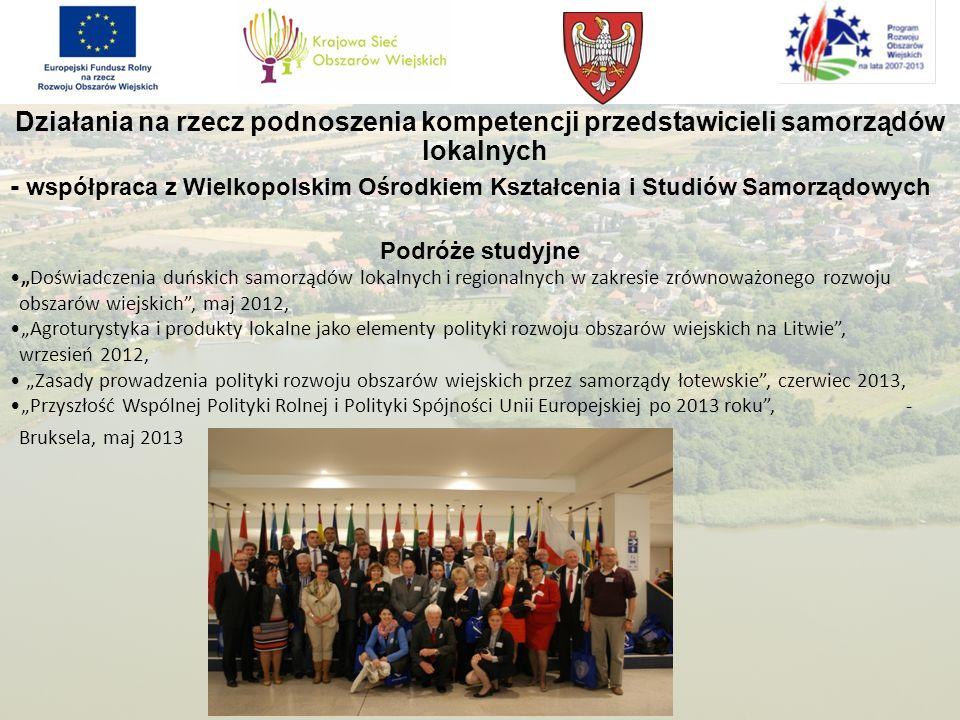 Działania na rzecz podnoszenia kompetencji przedstawicieli samorządów lokalnych