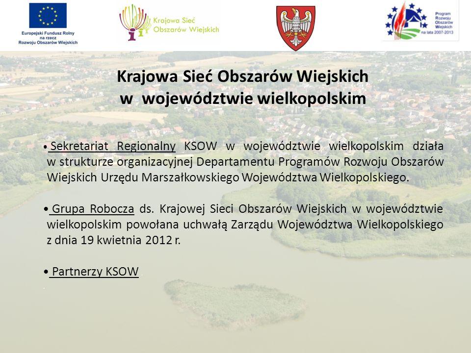Krajowa Sieć Obszarów Wiejskich w województwie wielkopolskim