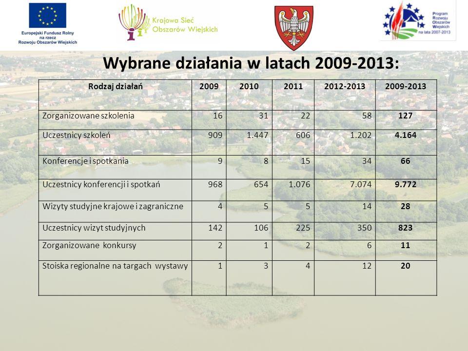 Wybrane działania w latach 2009-2013: