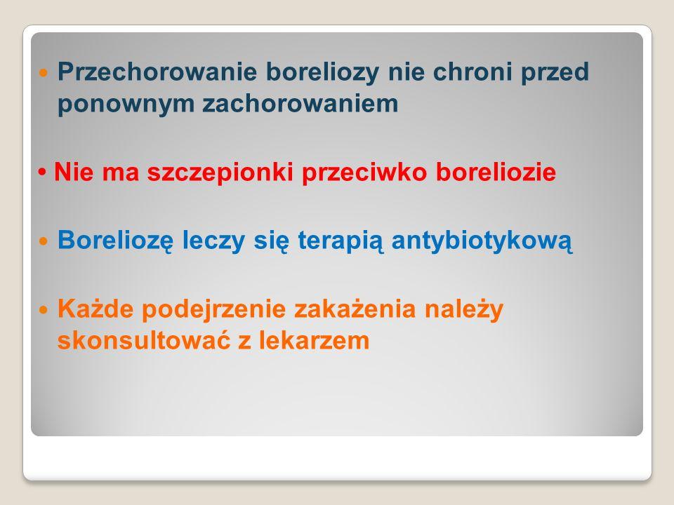 Przechorowanie boreliozy nie chroni przed ponownym zachorowaniem