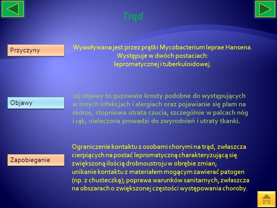 Trąd Wywoływana jest przez prątki Mycobacterium leprae Hansena. Występuje w dwóch postaciach: lepromatycznej i tuberkuloidowej.