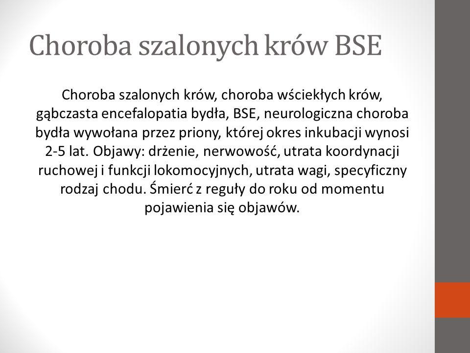 Choroba szalonych krów BSE