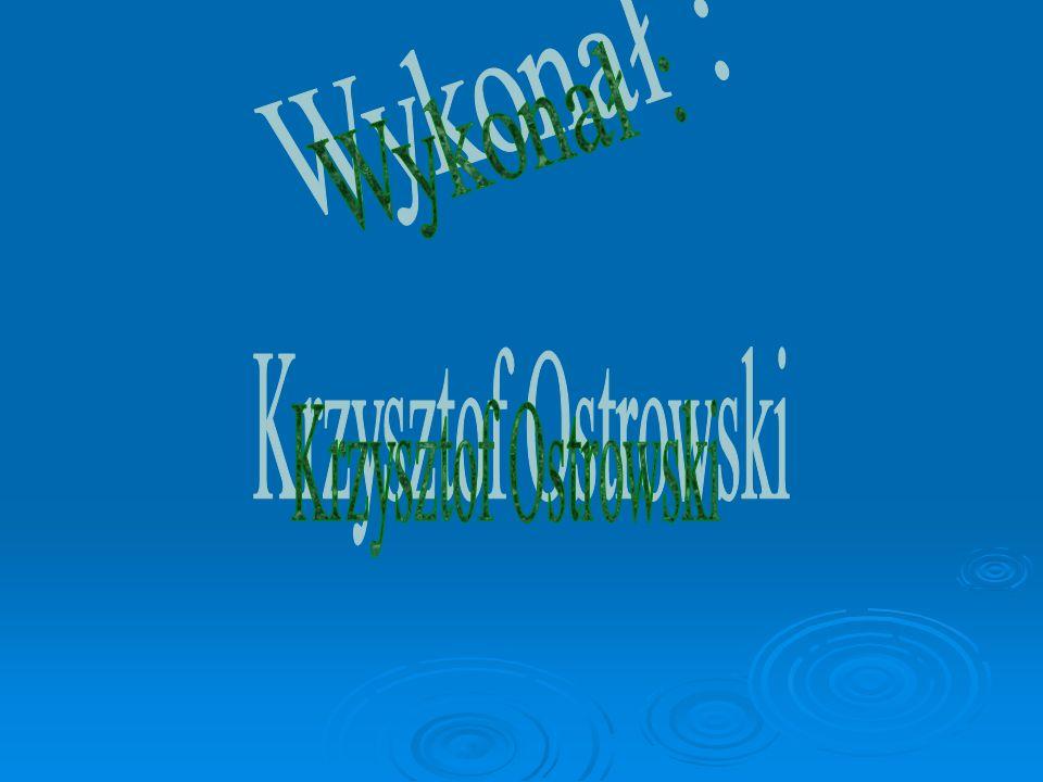 Wykonał : Krzysztof Ostrowski