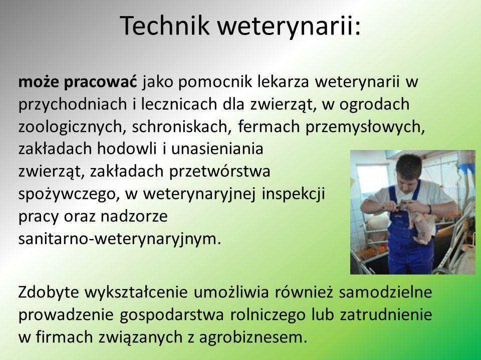 Technik weterynarii: